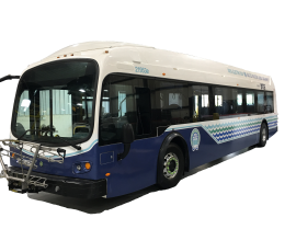 Electric buses arrive!